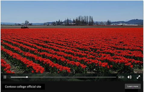 Extension de vidéo avec une annonce de recherche sur appareil mobile